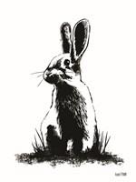 Farmhouse Rabbit Fine Art Print