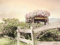 Flower Wagon Fine Art Print