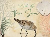Life by the Sea Fine Art Print