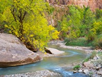 Utah Zion National Park, Virgin River Fine Art Print