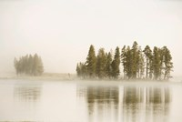 Morning Fog Along The Yellowstone River In Yellowstone National Park Fine Art Print
