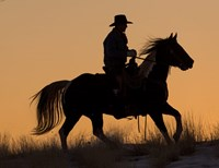 Cowboy Riding His Horse Winters Snow Silhouetted At Sunset Fine Art Print