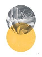 Blossoms I v2 Fine Art Print