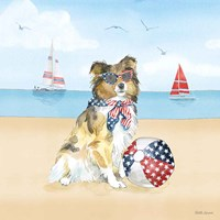 Summer Paws Patriotic V Fine Art Print