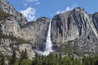 View Of Yosemite Falls In Spring, Yosemite National Park, California Fine Art Print