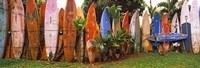 Arranged Surfboards, Maui, Hawaii Fine Art Print