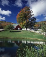 Autumn Farm Scene Eaton Center Nh Fine Art Print