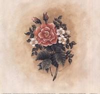 Antique Rose II Fine Art Print