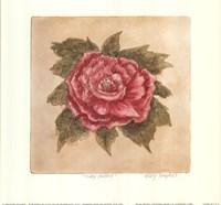 Ruby Peony Fine Art Print