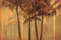 Sunset Palms III Fine Art Print