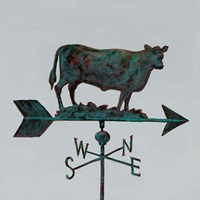 Rural Relic Cow Fine Art Print