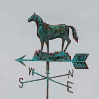 Rural Relic Horse Fine Art Print