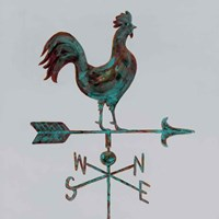 Rural Relic Rooster Fine Art Print