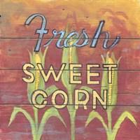 Fresh Sweet Corn Fine Art Print