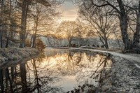 Frosty Morning Fine Art Print