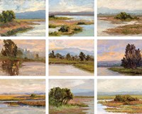 Jewels of the Wetlands, Series One Fine Art Print