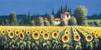 Summer Blooms Fine Art Print