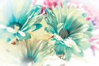 Color Full Fine Art Print