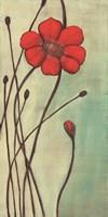 Eclat Rouge Fine Art Print