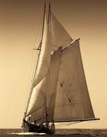 Under Sail I Fine Art Print