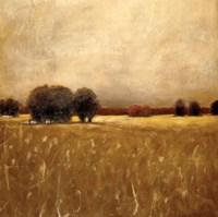 Ridge Field Fine Art Print