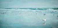 Coastal Breeze Fine Art Print