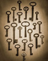 Key Elements II Fine Art Print