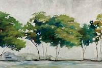 Late Summer Trees Fine Art Print