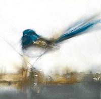 Little Blue II Fine Art Print