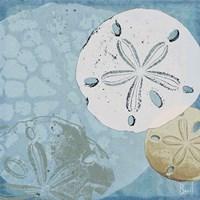 Ocean's Delight III Fine Art Print