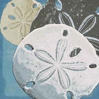 Ocean's Delight IV Fine Art Print