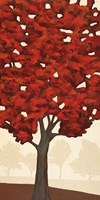 Autumn's Glory I Fine Art Print