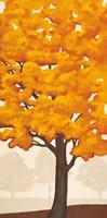 Autumn's Glory II Fine Art Print