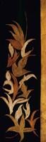 Black Shinwa I Fine Art Print