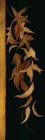 Black Shinwa II Fine Art Print