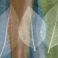 Leaf Structure II Fine Art Print