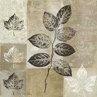 Essence of Nature I Framed Print