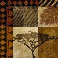 Acacia Sunrise I Fine Art Print