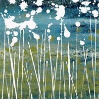 Midnight Blue Fine Art Print