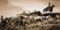 Gathering the Herd Fine Art Print