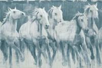 Equine Journey Fine Art Print