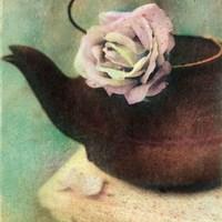 Nature's Blossoms II Fine Art Print