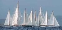 Sailing Team Fine Art Print
