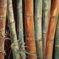 Caribbean Bamboo I Fine Art Print