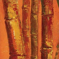 Bamboo Columbia III Fine Art Print