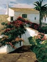 Courtyard Blossoms Fine Art Print