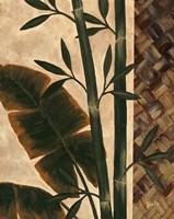 Temperate Flora Fine Art Print