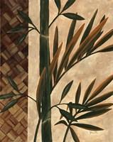 Palm Breeze Fine Art Print