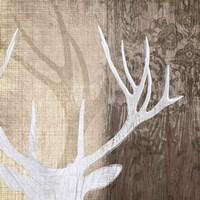 Deer Lodge II Fine Art Print