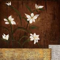 Orchid Melody II Fine Art Print